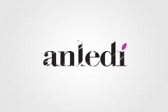 anledi_001