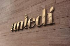 logotype_anledi_002
