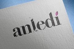 logotype_anledi_003