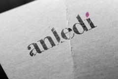 logotype_anledi_004